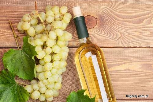 wino_bilgoraj_1.jpg