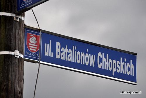 ulica_batalionow_chlopskich.JPG