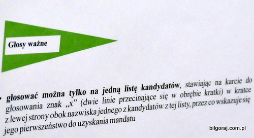 wybory_uzupelniajace.JPG