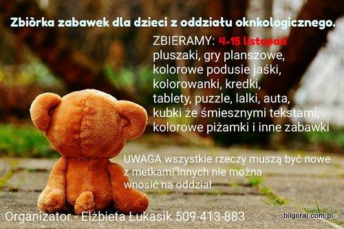 zbiorka_maskotek.jpg