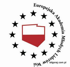 europejska_akademia_liderow_wsi.jpg
